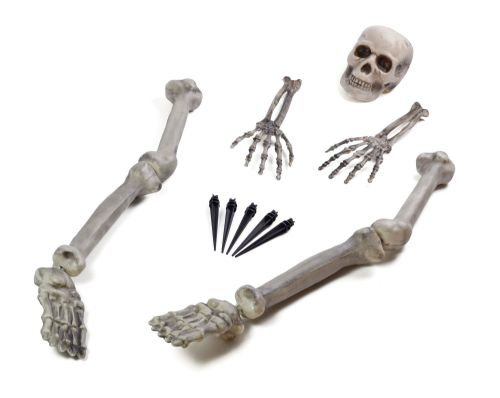 Halloween Skeleton Ground Breaker for Trick Or Treat Party Decoration